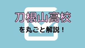 刀根山高校を丸ごと解説!【評判・進学実績・おすすめ塾】